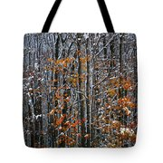 First Snow 3 Tote Bag