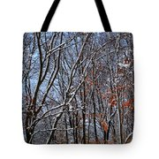 First Snow 4 Tote Bag