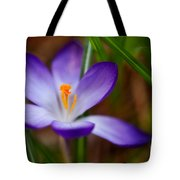 First Spring Crocus Tote Bag