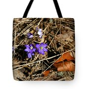 First Spring Flowers Tote Bag