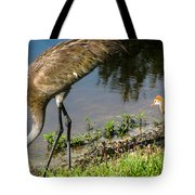 First Time At The Lake Tote Bag