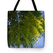 First Walnut Fruit 2014 Tote Bag