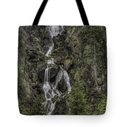 Fish Creek Falls Tote Bag