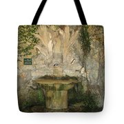 Fish Fountain Tote Bag