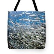 Fish Freeway Tote Bag