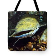 Fish Lips Tote Bag