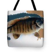 Fish Mount Set 10 Cc Tote Bag
