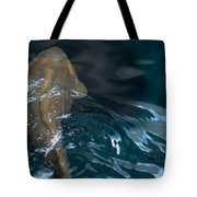 Fish Of The St. Lawrence Tote Bag