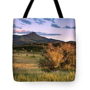 Fishers In Summer Tote Bag