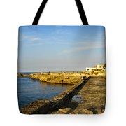 Fishing - Alexandria Egypt Tote Bag