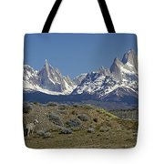 Fitz Roy Range In Springtime 2 Tote Bag