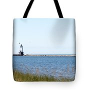 Flags In The Wind Tote Bag