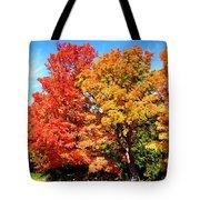 Flamboyant Autumn Tote Bag