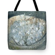 Flamboyant Cuttlefish Eggs Tote Bag