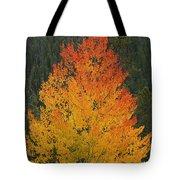 Flame On Tote Bag