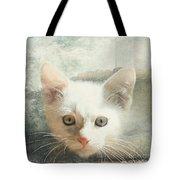 Flamepoint Siamese Kitten Tote Bag