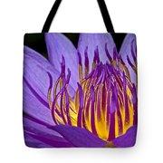 Flaming Heart Tote Bag by Susan Candelario
