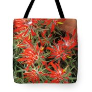 Flaming Zion Paintbrush Wildflowers Tote Bag