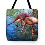Flamingo Duo Tote Bag