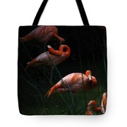 Flamingo Morning Tote Bag