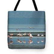 Flamingo On Lake Nakuru Tote Bag