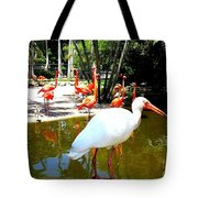 Flamingo Park Florida Tote Bag