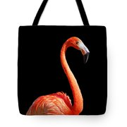 Flamingo Portrait Tote Bag