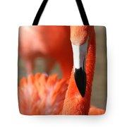 Flamingo Pose Tote Bag