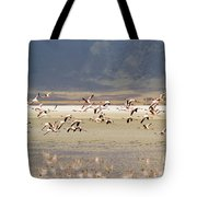Flamingos Flying Over Water Tote Bag