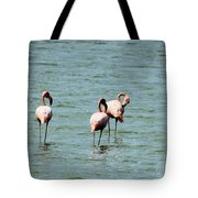 Flamingos Gathering Together Tote Bag