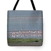 Flamingos On Lake Magadi Tote Bag