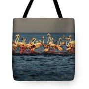 Flamingos On Lake Turkana Outside Elyse Tote Bag
