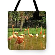 Flamingos Wading Tote Bag