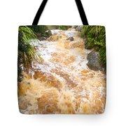 Flash Flood In West Coast Creek Of Nz South Island Tote Bag