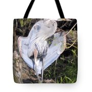 Flasher In The Park Tote Bag