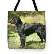 Flat-coated Retriever Dog Tote Bag