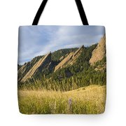 Flatirons With A Purple Wildflower  Tote Bag