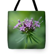 Flattering Compliments Tote Bag