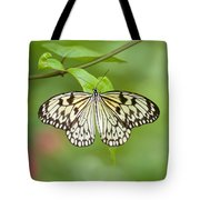Fleeting Beauty Tote Bag