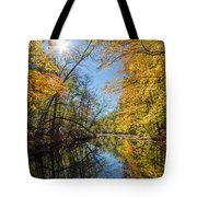 Fleeting Fall  Tote Bag