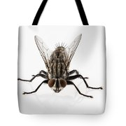 Flesh Fly Isolated Tote Bag