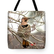 Flicker - Alabama State Bird - Attention Tote Bag