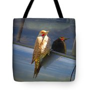 Yellow Shafted Northern Flicker Hanging Around Tote Bag