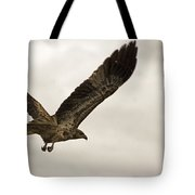 Flight Of The Brown Kite V7 Tote Bag