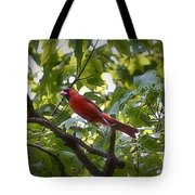 Flight Of The Cardinal Tote Bag