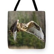 Flight Of The Well-fed Tote Bag