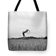 Flight Over The River Of Grass Tote Bag