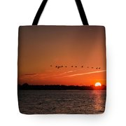 Flight Over The Sun Tote Bag