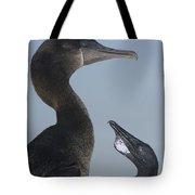 Flightless Cormorant And Chick Galapagos Tote Bag