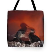 Flightless Cormorants And Volcanic Tote Bag